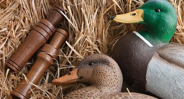 Rubber Ducks And Caller