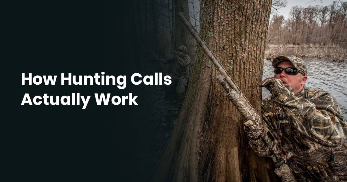 How Hunting Calls Actually Work