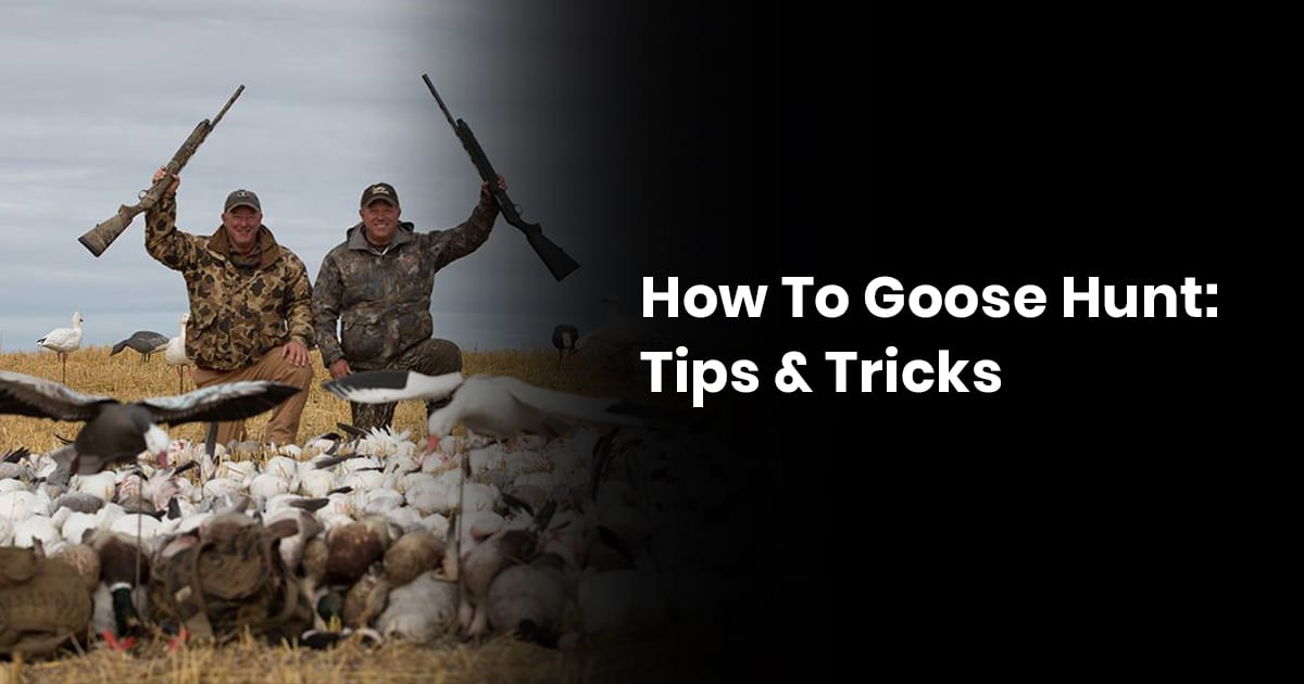 How To Goose Hunt: Tips And Tricks