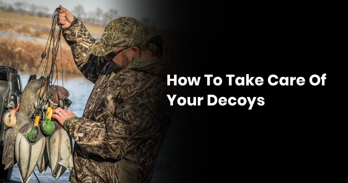 How To Take Care Of Your Decoys