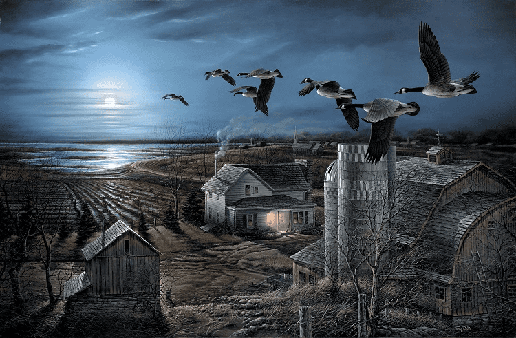 Ducks Flying By Night
