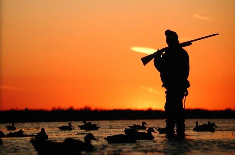 Hunting Before Sunrise