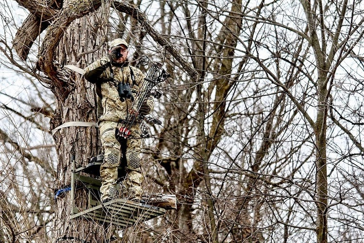 Hunter On Tree Stand
