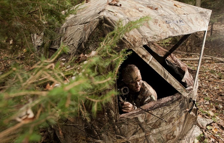 hunter waits