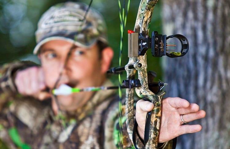 bow and arrow hunt