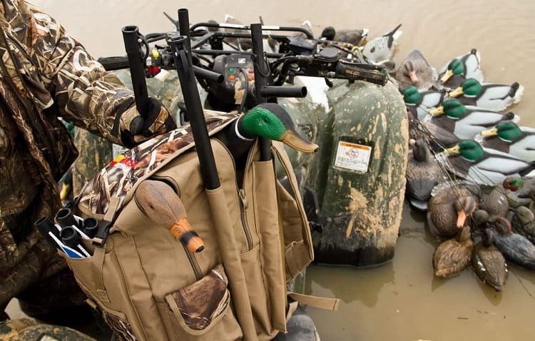 beags and decoys