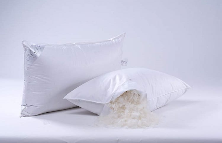goose feathers in pillows