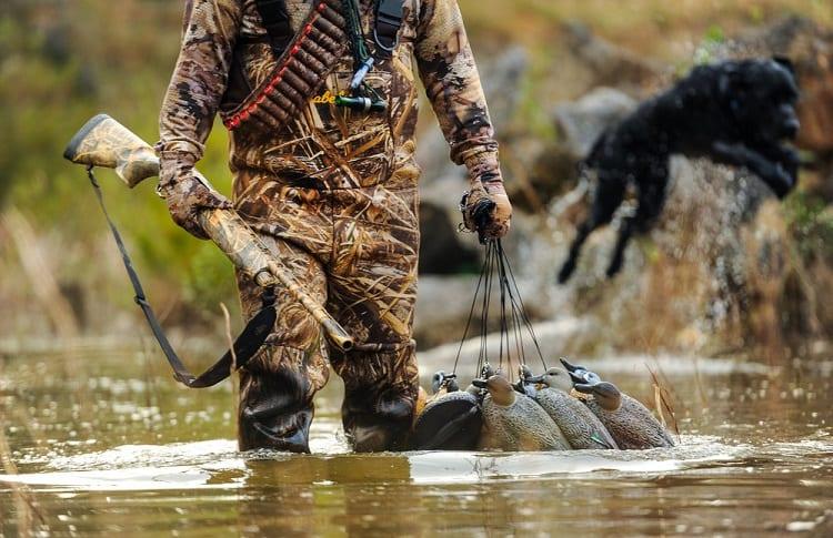 hunter placing decoys