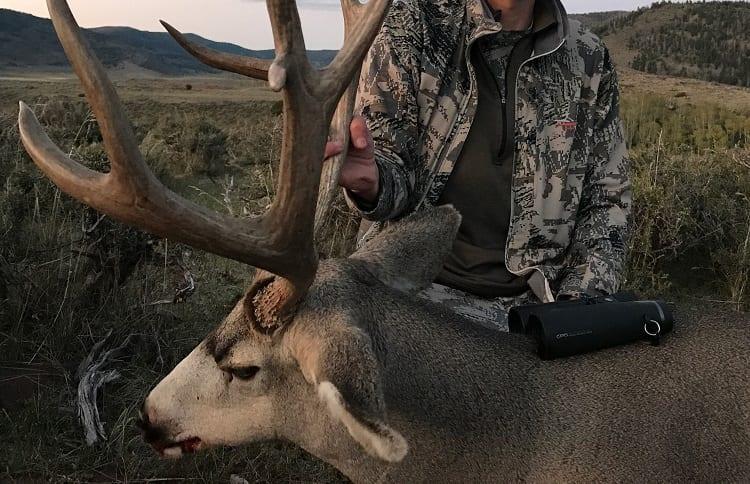 binoculars on hunted elk