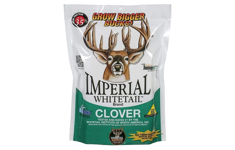 Imperial Clover Food Plot Seed Review